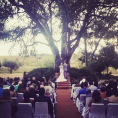 Getting married under our big tree at Casa-lee Country Lodge www.casa-lee.co.za #casalee #weddings #classical #elegant #pretoria Places To Get Married, Pretoria, Big Tree, Willow Tree, Getting Married, Dolores Park, Wedding Venues, Weddings, Country