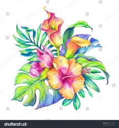 Hummingbird Discover Abstract Exotic Bunch Flowers Leaves Tropical Stock Illustration 276658670 watercolor floral illustration exotic nature tropical flowers bouquet orchid hibiscus cala lily green palm leaves isolated on white background Illustration Blume, Illustration Botanique, Botanical Illustration, Watercolor Illustration, Flower Bouquet Drawing, Flower Art, Drawing Flowers, Tattoo Flowers, Exotic Flowers