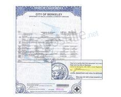 Free Resume 2018 » san bernardino birth certificate | Free Resume