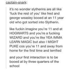 Actually I don't think Hufflepuffs or Ravenclaws majourly hate Slytherins, it's just that there's a centuries-old feud between those two Houses that the Gryffindors can't seem to let down even though the Slytherins dropped it GENERATIONS ago Harry Potter Universal, Harry Potter Fandom, Harry Potter Memes, Potter Facts, Slytherin Pride, Ravenclaw, Slytherin House, Severus Snape, Draco Malfoy