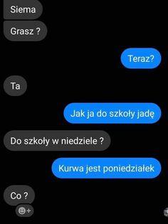 Haha Funny, Lol, Funny Lyrics, Polish Memes, Wtf Moments, Quality Memes, Bts Memes, Jokes, Messages