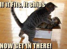 If it fits, it ships....