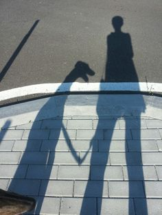 Io e Lieve, galga