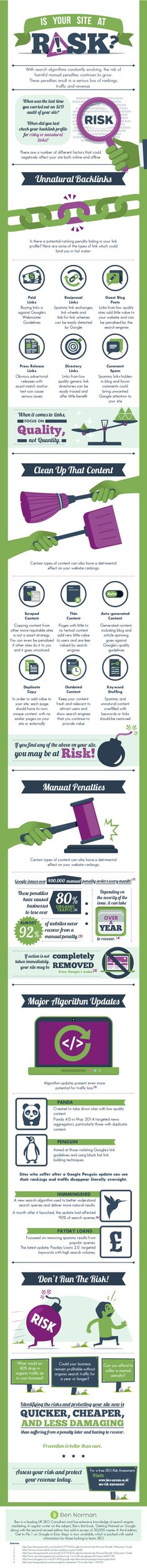 Is Your Site At Risk? SEO Risk Assessment Infographic