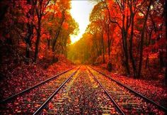 beautiful fall pictures | Beautiful Autumn Wallpaper « Desktop Background…