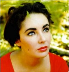 Elizabeth Taylor Eyebrow Envy: http://www.crowsfeetcupcakesandcellulite.com/?p=483