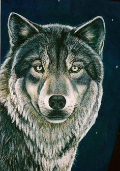 Wolf portrait; Acrylic on denim. By Elise Durenberger