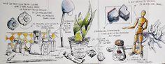 BB-Aquarelle: Dessin à la maison / Drawing in my house