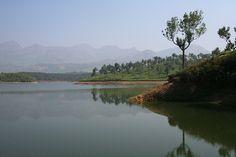 Munnar Reflections, Kerala.  India.