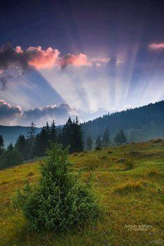 Carpathian Mountings , W Ukraine, from Iryna