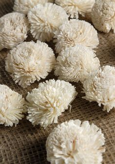 "Sola Gilly Flowers (2"" width) 18 for $6. This website is amazing for all kinds of decorations!  No need to go anywhere else."