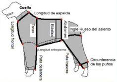moldes de ropa para perros - Recherche Google