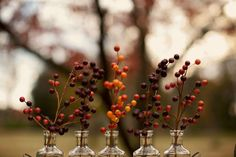 centrotavola di bacche | berries wedding centerpiece | Autumn Shoot: apple inspiration | Shoot autunnale: ispirazione mele http://theproposalwedding.blogspot.it/ #fall #wedding #autumn #apple #matrimonio #autunno #mele
