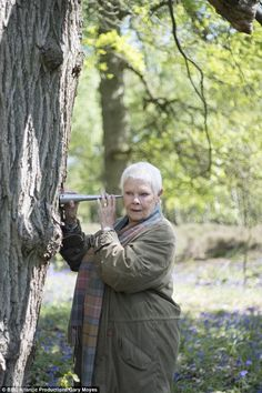 In a new BBC TV documentary, Oscar-winning actress Judi Dench reveals how her passion for trees she has allowed her six-acre Surrey garden to return to woodland. Tough Woman, Classy Women, Classy Lady, Maggie Smith, Judi Dench, Bbc Tv, Aging Gracefully, You Are Beautiful, Inspire Me