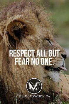 Fear no one Respect all