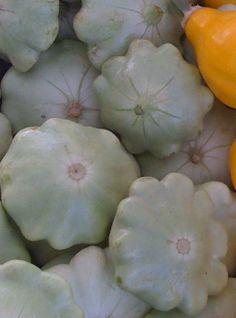 Organic Heirloom Green Tint Scallop Squash Seeds by kenyonorganics (Summer & Winter squash!)
