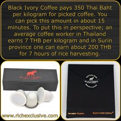 Thai Coffee, Coffee Roasting, Coffee Time, Nespresso, No Response, Thailand, Elephant, Ivory, Cards Against Humanity