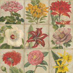 World Art group, Vintage Flower Grid