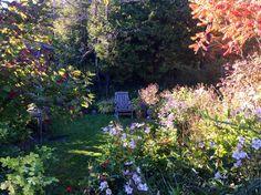 Stoney Hollow's Secret Garden in the fall.