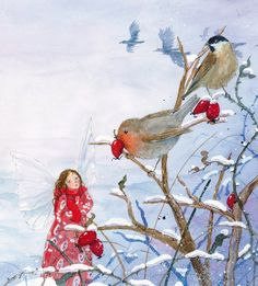 A little fairy gets lost in a snowstorm, and help comes from unexpected places. 'Little Fairy's Christmas' is a lovely Christmas picture book by Daniela Drescher