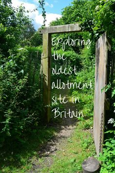 Visiting the unique heritage site, St Anns allotments in Nottingham - the oldest allotments in the Britain, possibly the world!