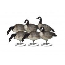 Canada Goose chateau parka outlet discounts - 1000+ images about Goose Decoys on Pinterest | Snow Goose, Full ...