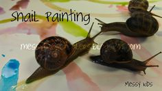 Snail Painting -- as long as you're careful to use non-toxic watercolors, no reason not to have fun with some snails and kiddos.