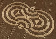 Essay on crop circles