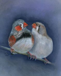 Zebra Finch Pair  pastel and acrylic by rgfineart on Etsy, $95.00