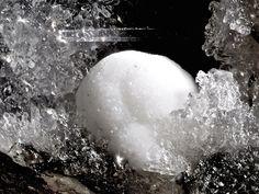 Zeophyllite, Ca4Si3O8(OH,F)4•2(H2O), Schellkopf, Brenk, Eifel, Rhineland-Palatinate, Germany. Spherical white crystal on Phillipsite. Fov 3.8 mm. Collection: Lithothek der Münchener Micromounter Copyright: Bebo