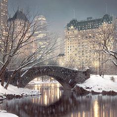 I cant imagine anything more beautiful than winter in Central Park, NYC. Rod Chase, Twilight in Central Park Oh The Places You'll Go, Places To Travel, Places To Visit, Travel Destinations, Central Park New York, Art Central, Central City, New York Noel, New York Weihnachten