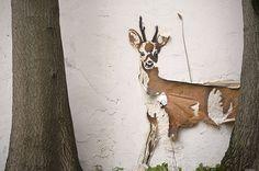 deer, oh deer.