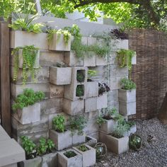 Cinder Block Planters That You Would Like To Have - Page 2 of 3