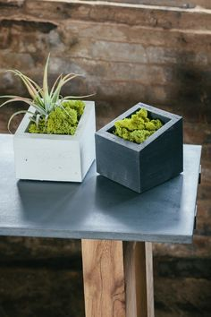volatiledesign:  Angl Concrete Planters by In. Sek Design....