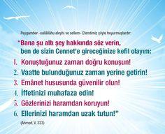 Cennet!  #cennet #söz #doğru #emanet #iffet #göz #haram #el #hadis #islam #hadisler #ilmisuffa