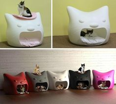 Baby Shoes, Kitty, Studio, Mango, Cat, House, Design, Products, Kittens