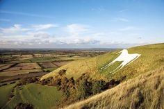 (PHOTO: AA/Michael Moody) Images of Britain: A Visual Guide:  (The Westbury White Horse, Wiltshire, England)  Standing patiently on the escarpment overlooking Salisbury Plain, the white horse is one of a dozen to be found etched into the chalky Wiltshire Hills. Its modern appearance is thanks to George Gee, who had it remodelled and recut in 1778. A coating of concrete and white paint in the 1990s has ensured its maintenance as a distinctive local landmark.