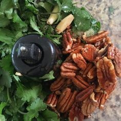 cilantro pecan pesto recipe