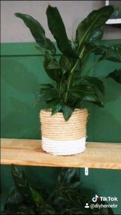 Hanging Plants, Indoor Plants, Diy Flowers, Flower Pots, Diy Para A Casa, Fleurs Diy, Diy Crafts For Home Decor, House Plants Decor, Plants In Living Room
