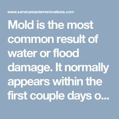 Mold is the most common result of water or flood damage. It normally appears within the first couple days of a water damage event. If you found mold anywhere your house or business building call 866-676-7761, our team will outline the process for mold inspection and remediation.