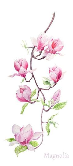 watercolor magnolia branch by mti6 on ETSY