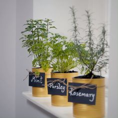 This Little Idea ~ Metallic Plant Pot How about a small DIY project that can be done in an afternoon? Hanging Plants, Potted Plants, Indoor Plants, Indoor Garden, Diy Planters, Planter Pots, Small Flower Pots, Small Laundry Rooms, Herbs Indoors