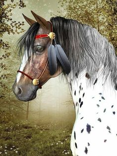 aca8f44f00 Title Indian Pony Artist Jayne Wilson Medium Digital Art - Digital  Rendering Description Portrait of the head and shoulders of an appaloosa  Indian Pony