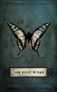 """Beautiful Butterfly - """" Use your Wings """" - Inspiring & Inspirational Quotes & Sayings- Fly High!"""