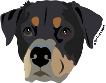 This is sweet Dixie the Rottweiler! Order your custom artwork at www.thedogempire.com/shop