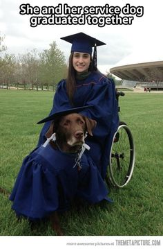 service dogs    Like I said dogs are love! Congratulations to both of them!