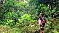 COSTA RICA WALKING TOUR 9 days -- starting at $2,988