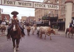Fort Worth Stock Yards - home to the Fort Worth Herd, the world's only daily cattle drive, where Texas Longhorns are driven down East Exchange Avenue by cowhands in period dress. Rodeo action and Wild West shows take place year-round in the Cowtown Coliseum