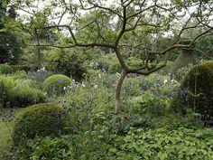 Skulpturalt med Rhus typhina. Balls, flowers  tree silhouettes, Paul den Hollander's garden