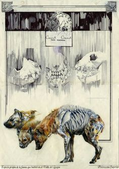 12) This artwork reflects the beastliness of the  hyena, and it's untameable hunger. -Livia Lovett